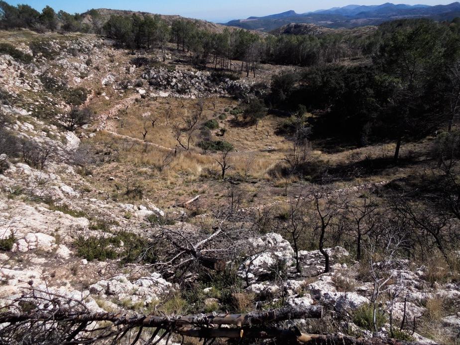 Torca del Clot de Carreres después del incendio de 2012