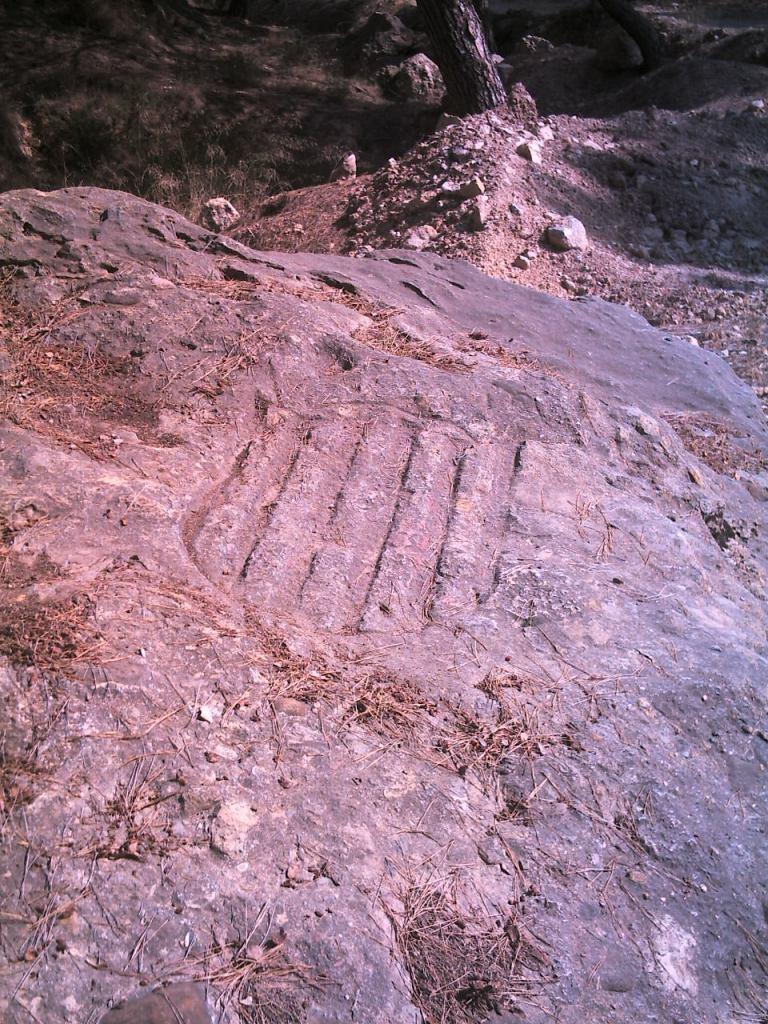 Piedra del Escudo